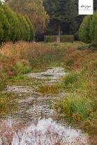 Herbst_141011_14 Kopie